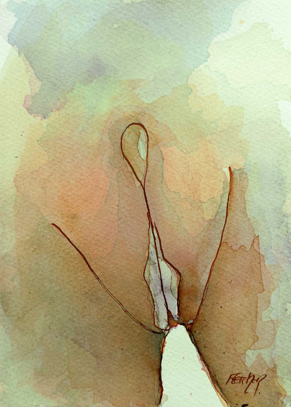 Vulva Drawing by Stewart Fletcher