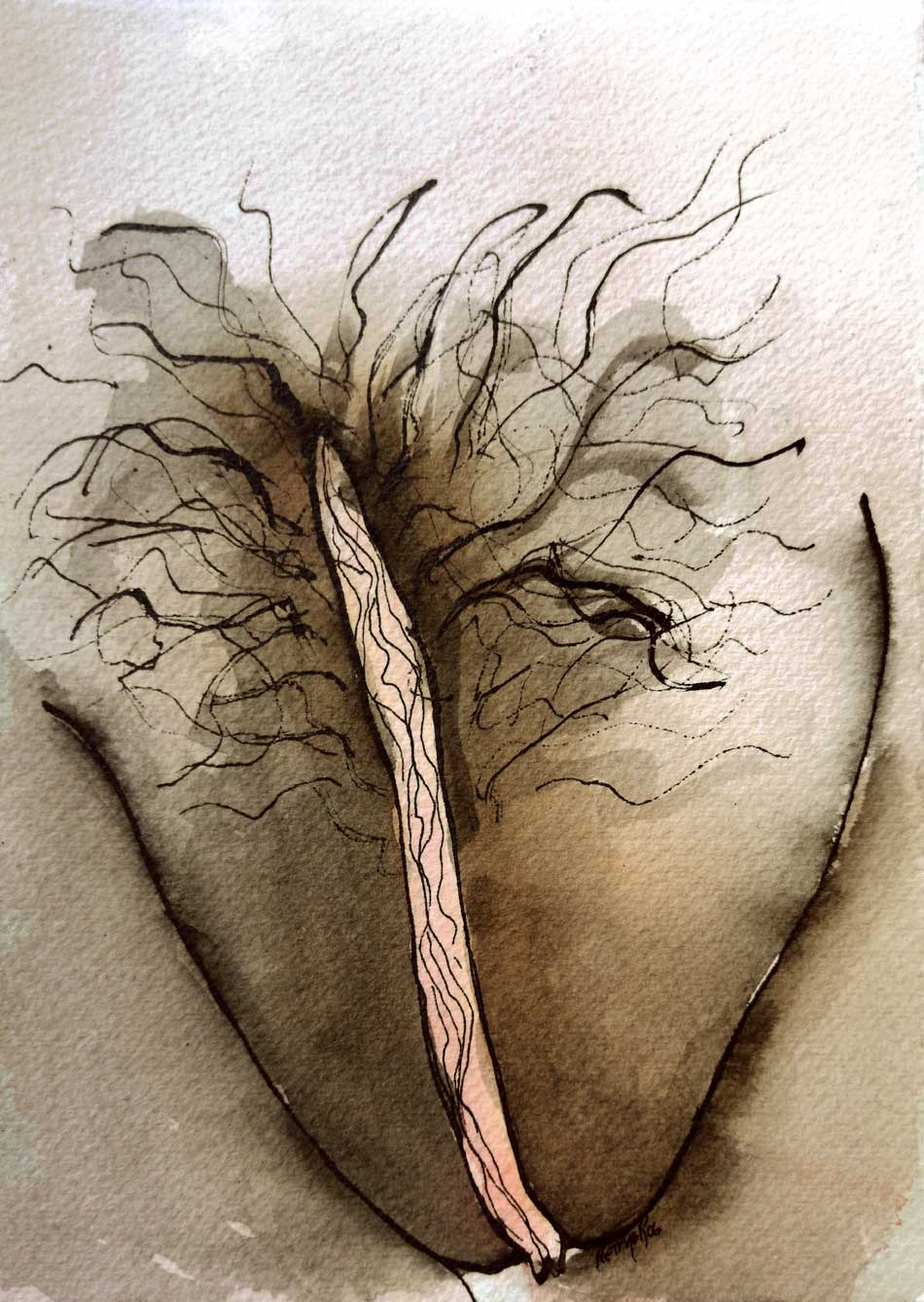 erotic drawing of a vulva